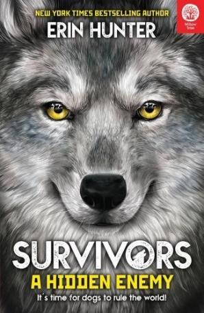 Survivors: A Hidden Enemy