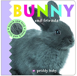 Touch and Feel: Bunny and Friends